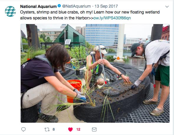 Aquarium Tweet